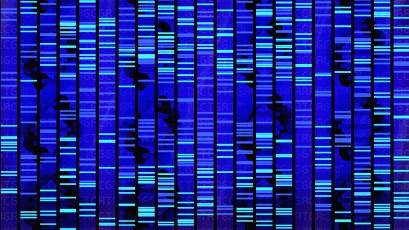 Mordverdacht: So sieht das Ergebnis einer DNA-Analyse aus. Anhand von Übereinstimmungen in diesem Muster, können Forensiker Täter überführen.