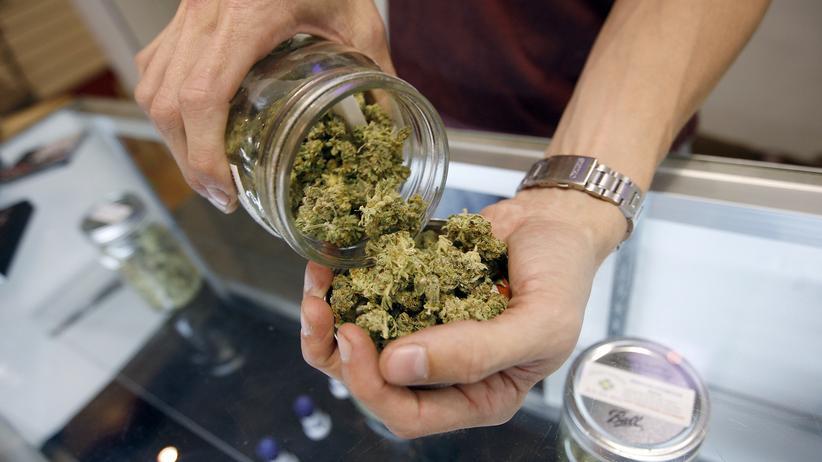 Cannabis: Seit dem 10. März ist Cannabis für Schwerkranke auf Rezept in der Apotheke erhältlich.