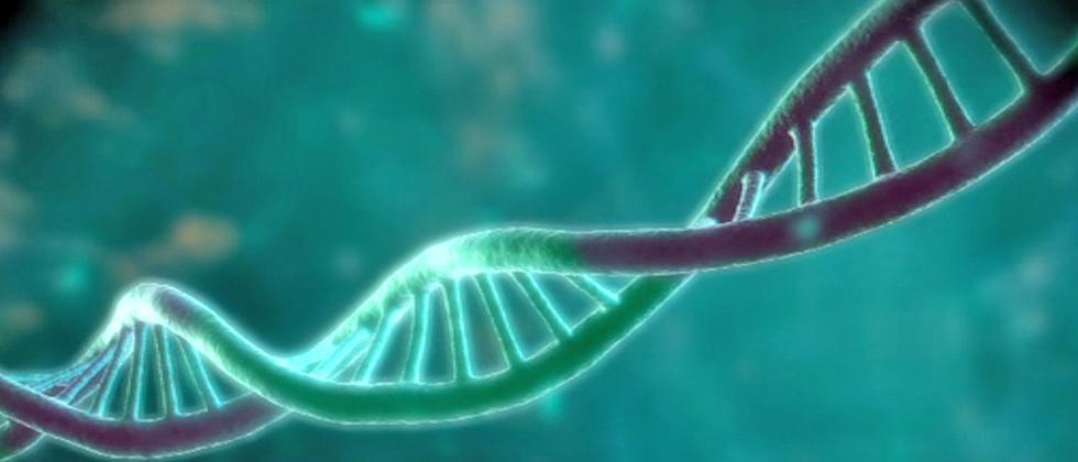 DNA Datenspeicher Doppelhelix Desoxyribonukleinsäure
