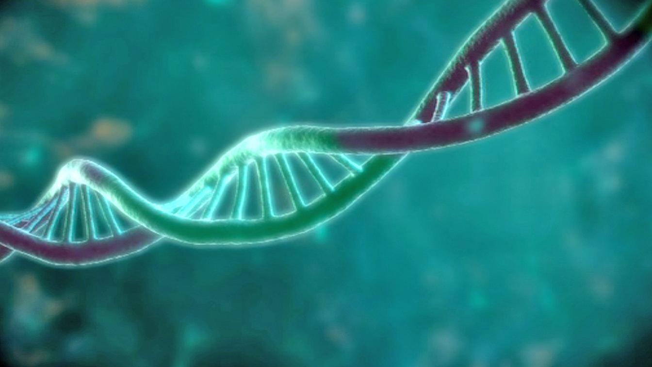 Festplatten aus DNA speichern mehr als jeder Chip