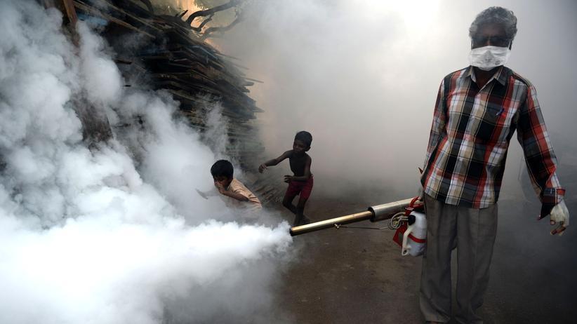 Klimawandel: Das Klima wird zur Gesundheitsgefahr