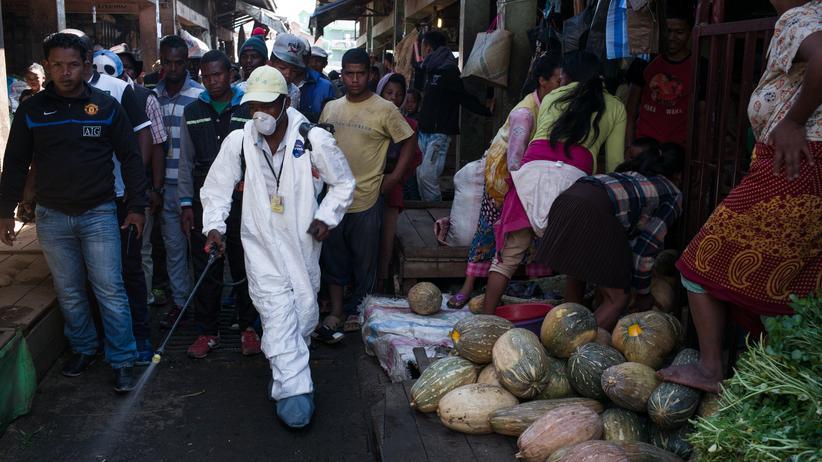 """Madagaskar: """"Die Pest hat sehr viel mit Hygiene zu tun"""""""