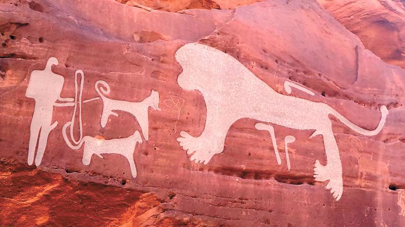 Archäologie: Schutzschild gegen tierische Gefahr? Felszeichnung in Saudi-Arabien, mit Mensch, Hunden und Löwe