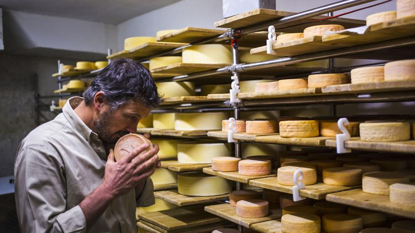 Käse: Kann Käse süchtig machen?