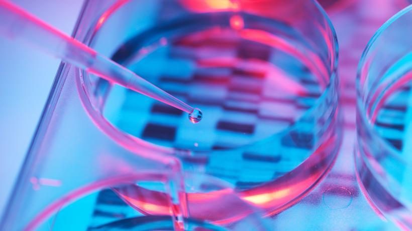 Genetik: Ein DNA-Test im Labor. Was wir sind, steht in unseren Genen – so sind wir heute überzeugt. Aber kann ein Mensch auch Eigenschaften vererben, die nicht von Geburt an in seinem Erbgut verankert sind?