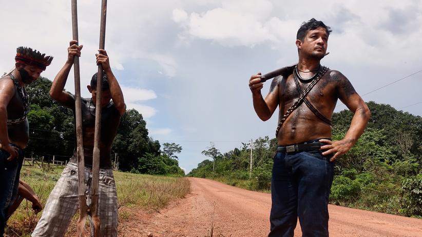 Amazonas: Die letzten Wächter des Waldes