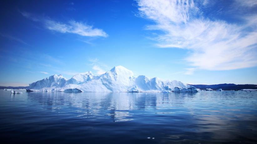 Klimawandel: Mikroalgen sind robuster als angenommen