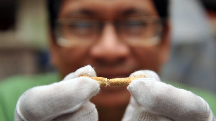 Menschheit: Dieser 67.000 Jahre alte Fußknochen ist der älteste Beweis für die Besiedlung von Menschen auf den Philippinen. Doch jetzt gibt es Hinweise, dass der Mensch noch viel früher da war.