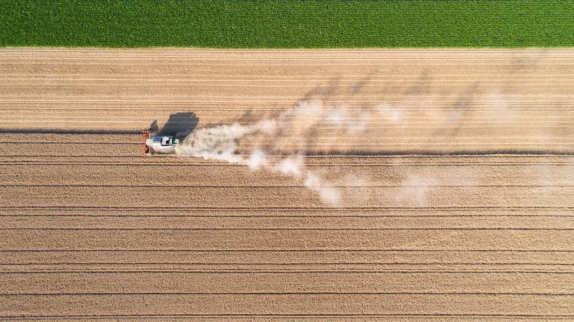 Dürre und Unwetter: Starkregen, Hitze, Noternten – Landwirte kämpfen mit dem Klimawandel. Wie können sie ihre Äcker retten?