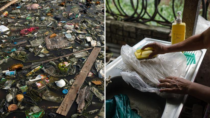 Plastikmüll: Ihre Heimat ist ein Müllteppich