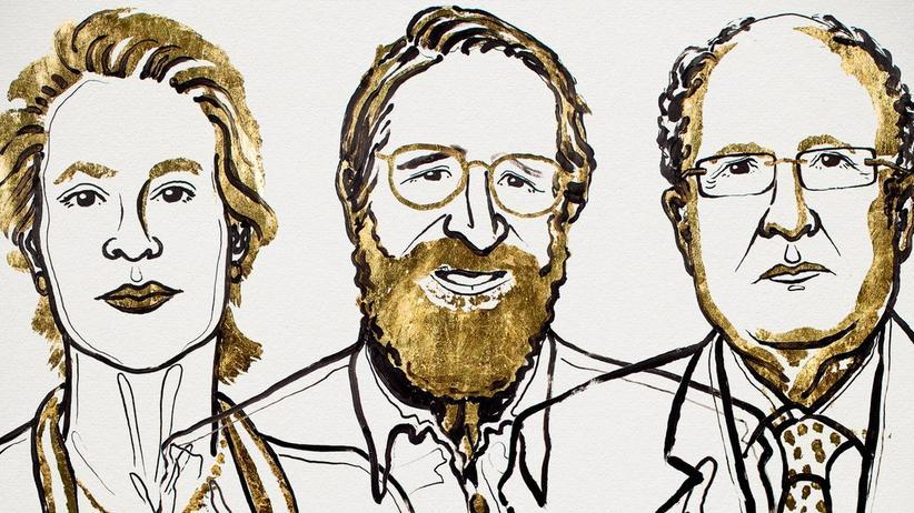 Nobelpreis in Chemie 2018: Nobelpreis für gerichtete Evolution von Enzymen