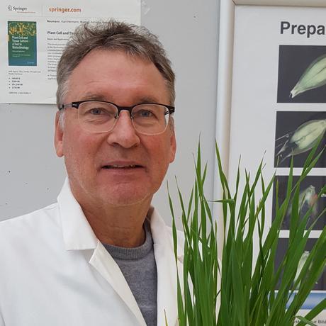 Nutzpflanzenforscher Karl-Heinz Kogel