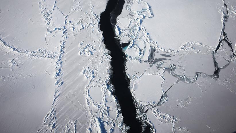 Quiz zum Klimawandel: Wissen Sie mehr übers Klima als die meisten?