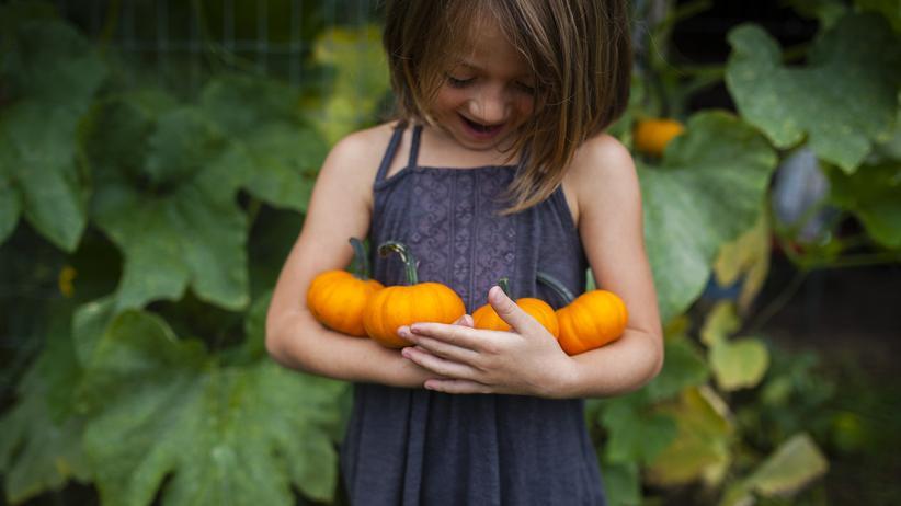 Kinder und Ernährung: Eine Ernährungsempfehlung: Mindestens die Hälfte bis Dreiviertel der Kost sollte pflanzlich sein.