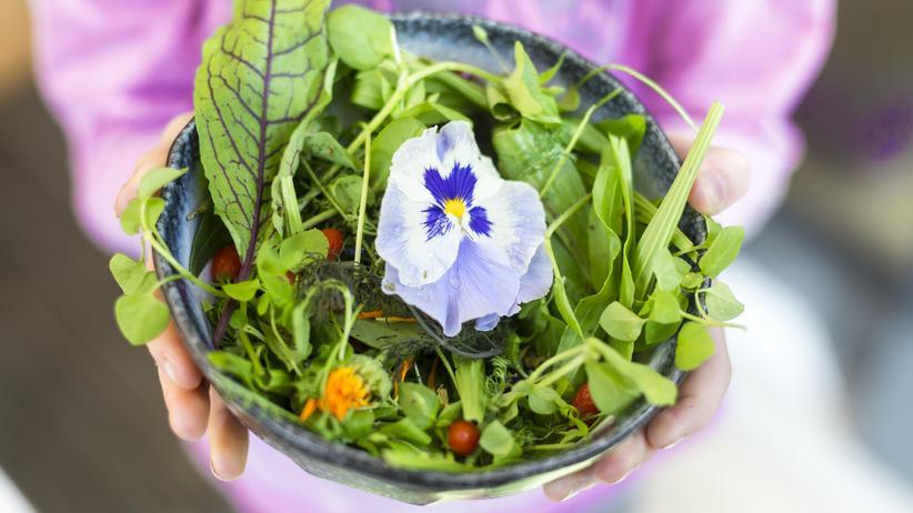 Vegane Ernährung Kinder: Salat ja, Ei nein: Wer sich vegan ernährt, verzichtet komplett auf Nahrung tierischen Ursprungs.