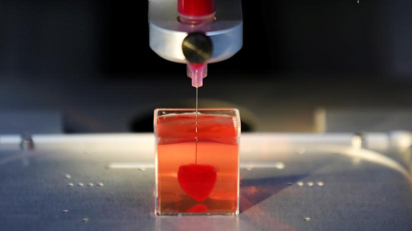 3D-Drucker: So groß wie eine Kirsche: Forscher der Universität Tel Aviv stellen ihr gedrucktes Miniherz vor.