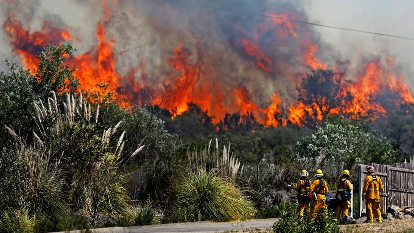 Waldbrände: Kalifornien hat jedes Jahr mit Waldbränden zu kämpfen – hier ein Feuer im Jahr 2014 im Süden des US-Bundesstaates.
