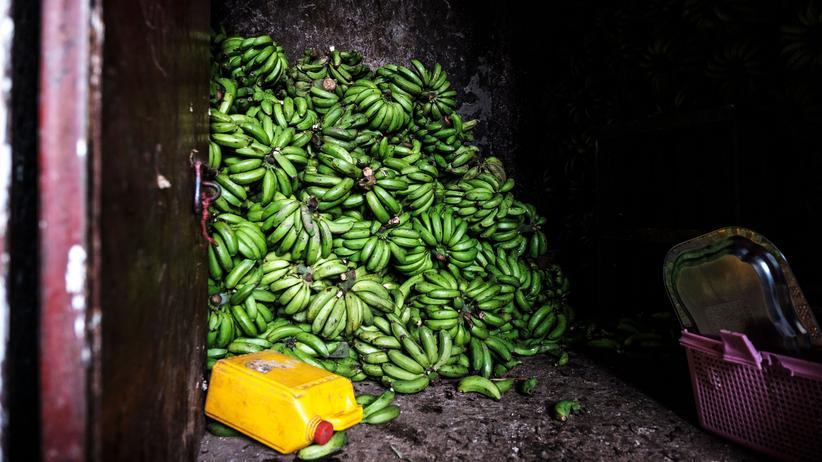 Ernteeinbußen: Ein Bananenlager in der Gegend von Atikil Tera in Äthopien
