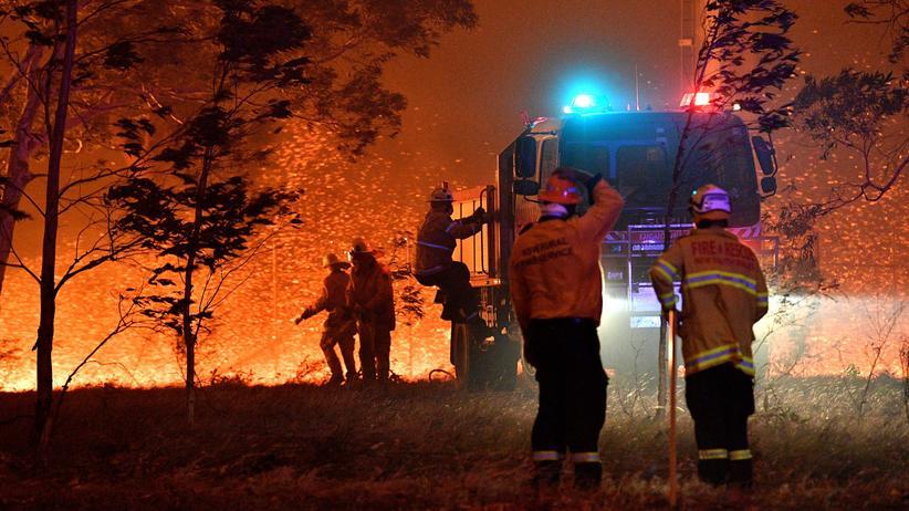 """Waldbrände in Australien: """"Es ist nicht möglich, alle Feuer unter Kontrolle zu bringen"""""""