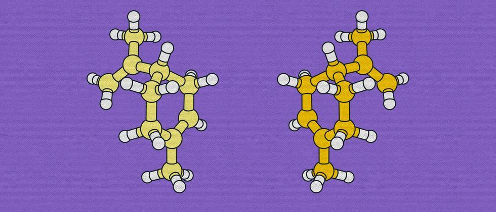 Nobelpreis für Chemie: Ein Molekül entfernt von Magie
