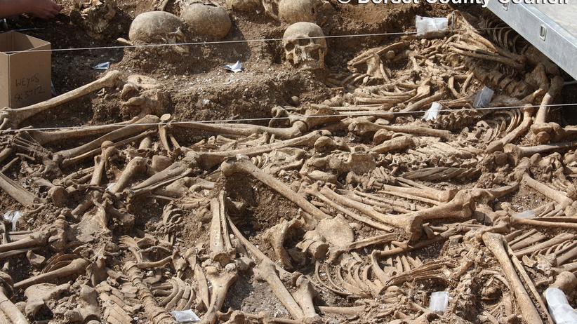 Archäologie: Englisches Massengrab voller Wikinger