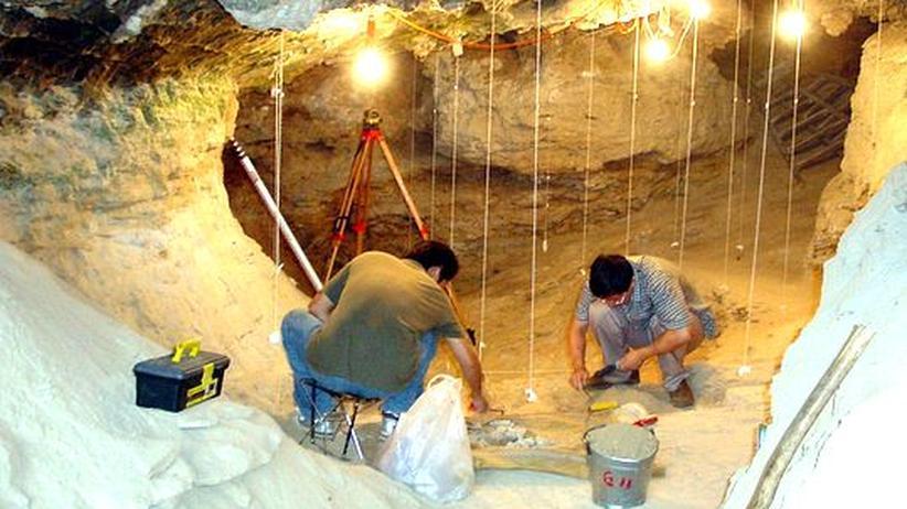 Frühmenschen: DNA aus 40.000 Jahre altem Skelett entziffert