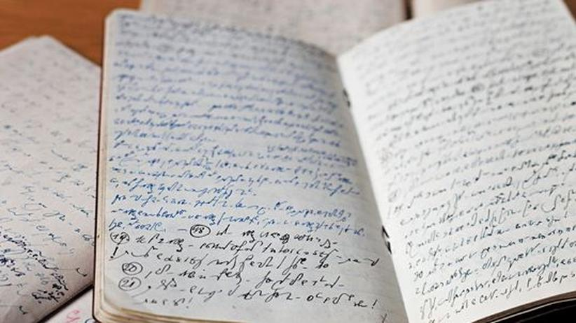Geschichte Österreichs: Die Tagebücher von Heinrich Wildner