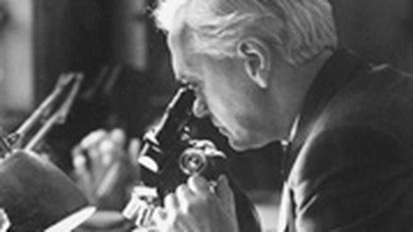 Verdorbene Proben: Alexander Fleming fiel 1928 die heilsame Wirkung des Pilzes Penicillium notatum auf