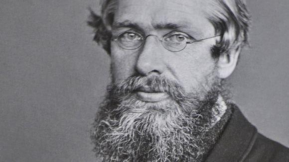Portait von Alfred Russel Wallace