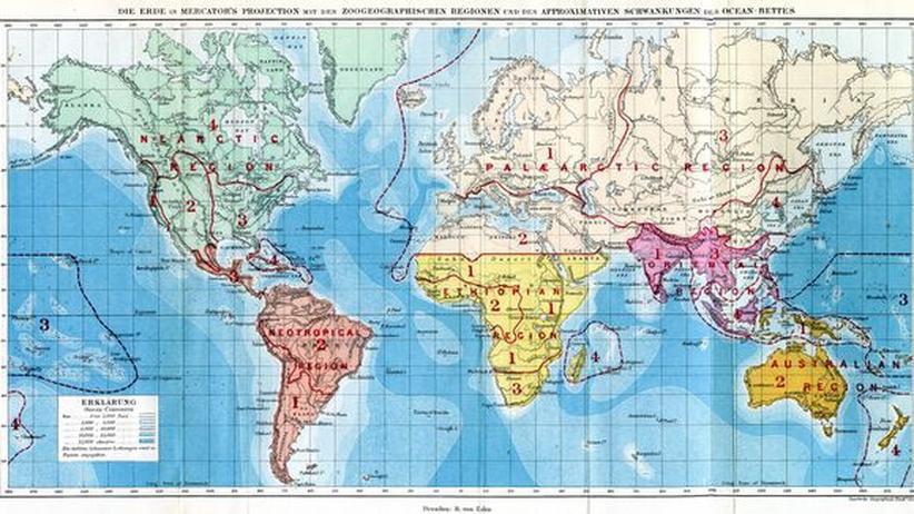 Weltkarte mit den Zoogeographischen Regionen