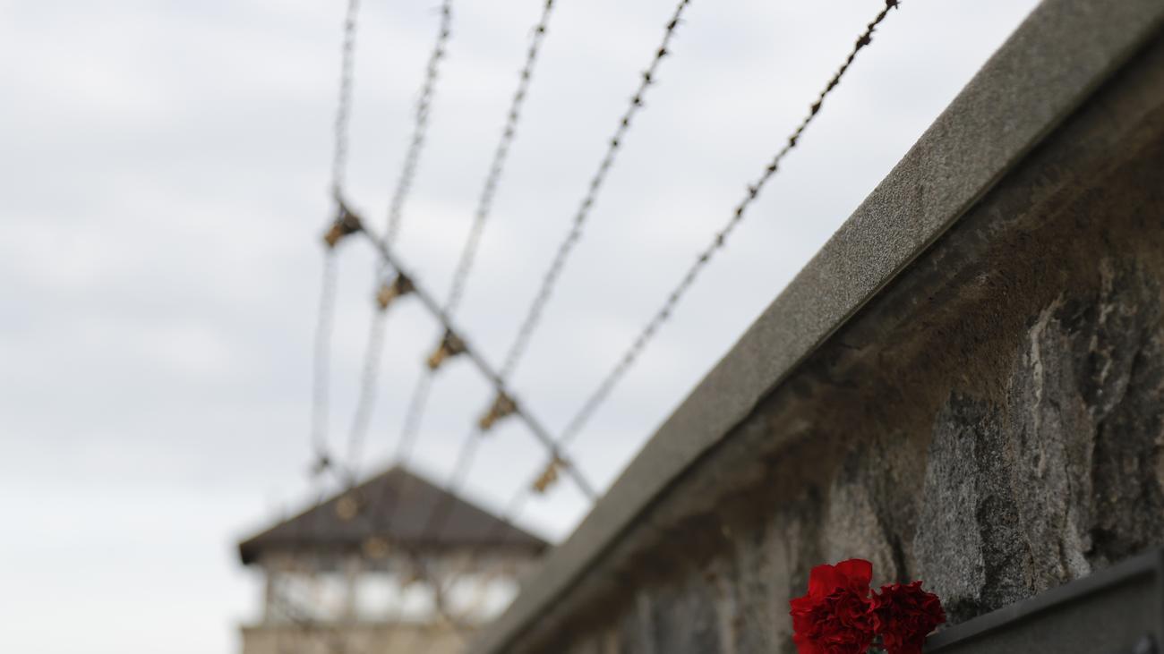 Stichwort: Mauthausen   rematesbancarios.com