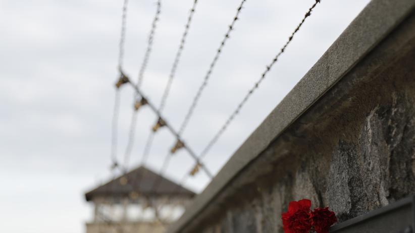 KZ Mauthausen: In der Grauzone des Lagers