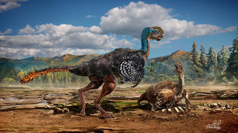 Huanansaurus Dinosaurier China Ausgrabung
