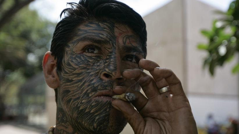 Drogenkrieg Mexiko Marihuana USA