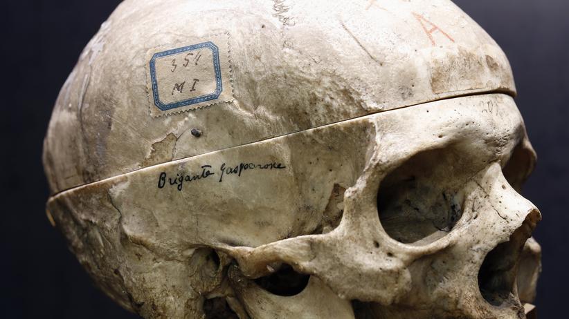 """Kriminologie: Der italienische Psychiater Cesare Lombroso untersuchte im 19. Jahrhundert Schädel von Kriminellen – wie auch den des Kriminellen """"Gasparone"""", ausgestellt im Lombroso Museum in Turin."""