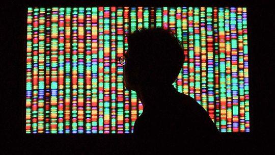Genetik Epigenetik DNA Doppelhelix Erbgut Genom