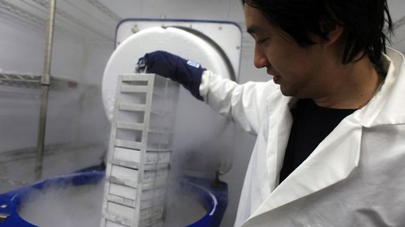 Gentechnik: US-Stammzellforscher erhalten wieder Steuergelder