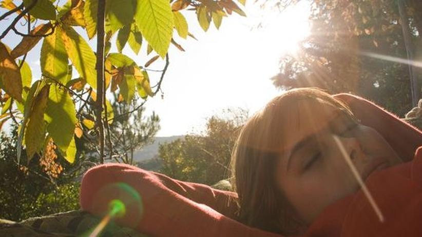 Das Pendel unserer inneren Uhr wird hauptsächlich vom Sonnenlicht angeschubst