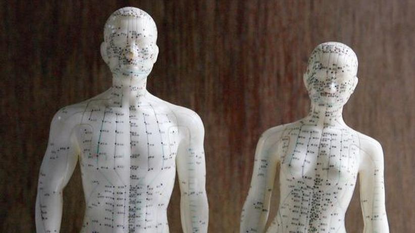 Fachchinesisch: Auch Akupunktur steht auf dem Lehrplan der Deutschen Heilpraktikerschule