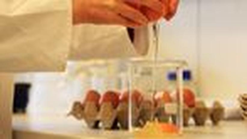 Dioxin: Eier, Fleisch und Milch kaum noch bedenklich