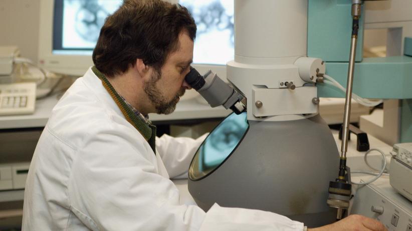 Debatte über Virusforschung: US-Gremium erwägt Moratorium für Influenza-Studien