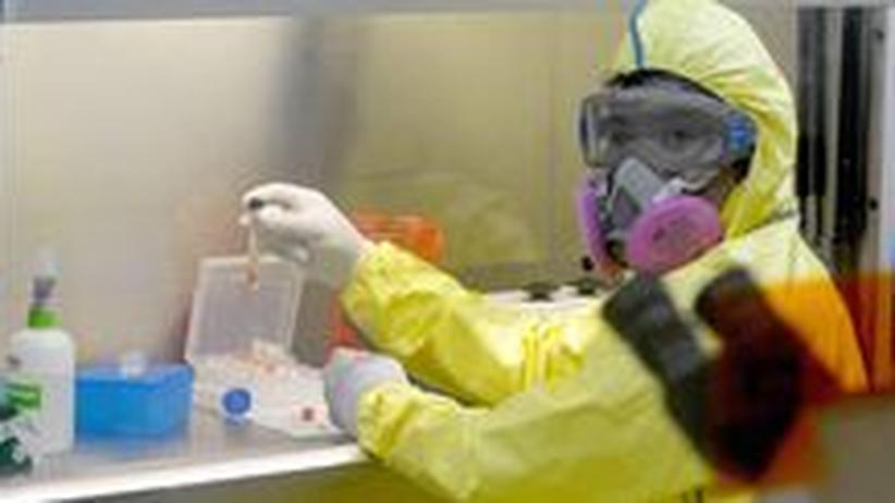 Ein Laborant untersucht 2009 auf dem Höhepunkt der Schweinegrippe Proben von möglichen Infizierten.