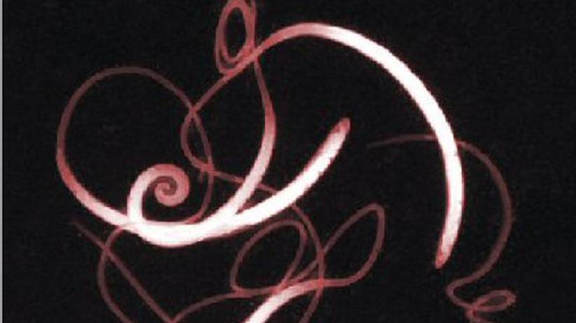 Autoimmunkrankheiten: Wenn der Körper verrücktspielt, können Würmer helfen