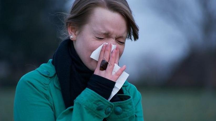Schnupfen Erkältung