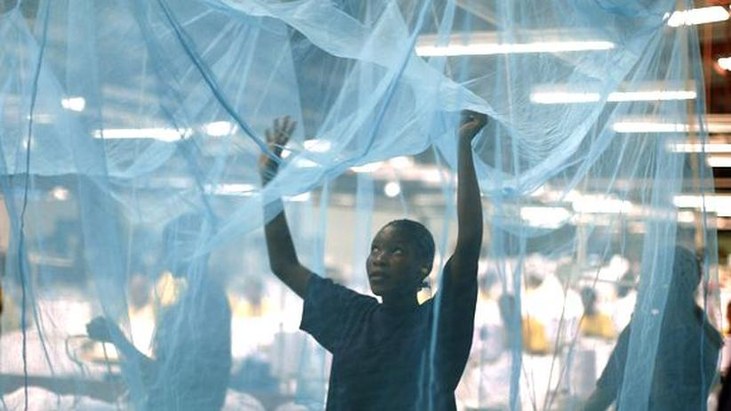 Tansania Malaria Mücken Parasiten Moskitonetz