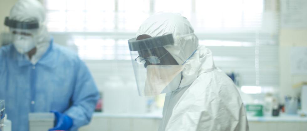 Ebola in Westafrika: Auf der Spur des Erregers