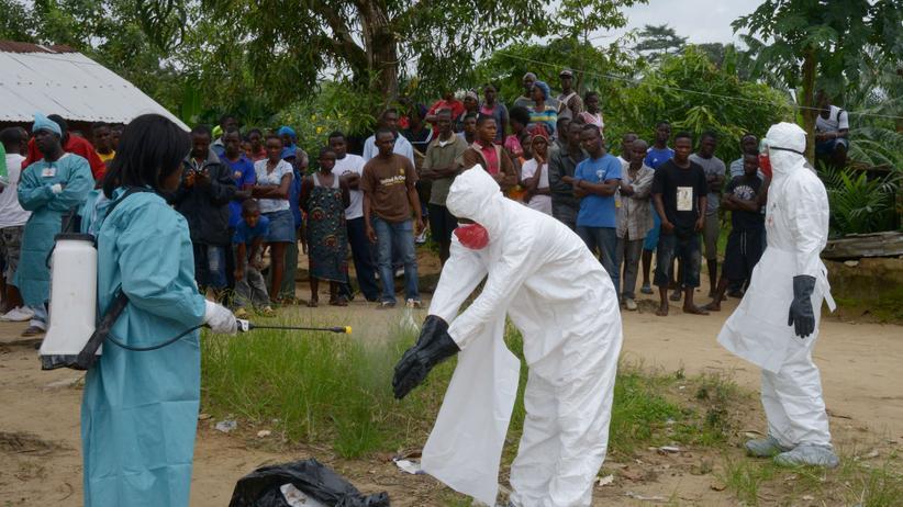 Ebola-Arzneien: Blutprodukte, Grippemittel und Schimpansen-Erkältungsviren