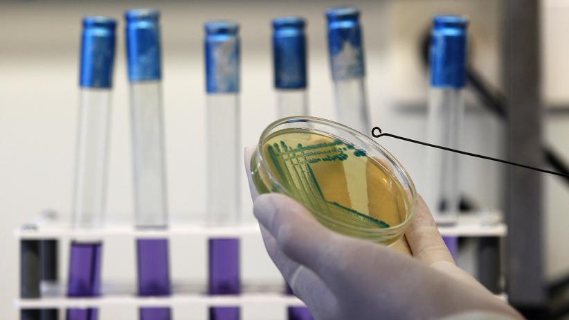 Antibiotika Resistenzen Krankenhauskeime E.coli Bakterien Keime MRSA ESBL