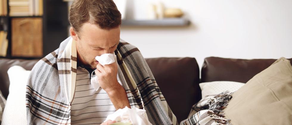 Medikamente: Mit Hopfen gegen Schnupfen