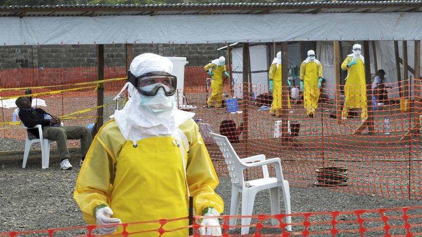 Wissen, Epidemie, Ebola, Liberia, Guinea, Weltgesundheitsorganisation, Sierra Leone, Westafrika